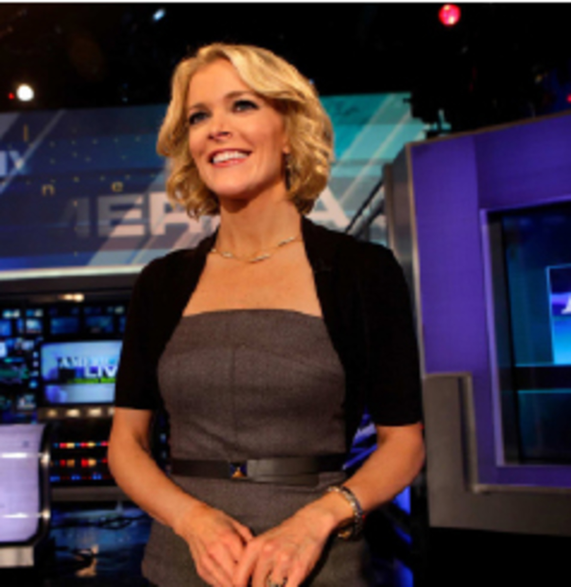 "Kelly joined the Fox News Channel in 2004 and currently serves as an anchor for ""The Kelly Files.""  Her show looks indepth at late breaking stories and investigative reports.  It is now ranked second in cable news."