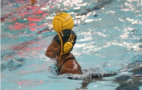 Water polo swims back after losing seniors