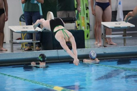 Swimming finishes strong at state
