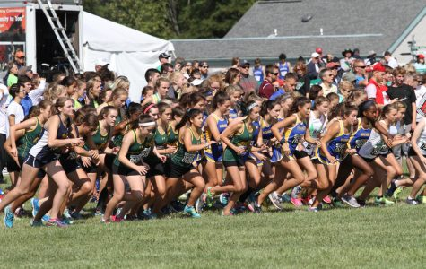 Cross country runs into Mason Invitational