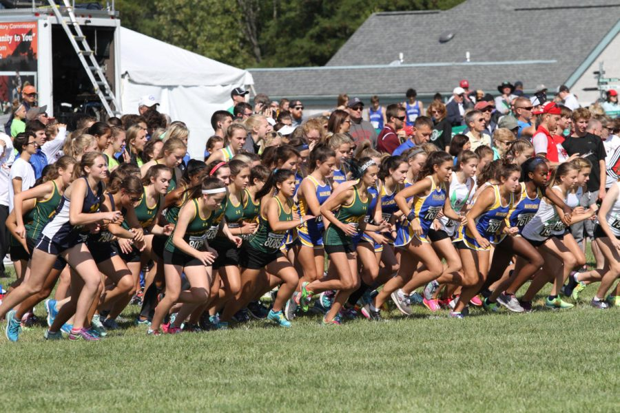 READY? Girls Cross-Country kicks off at the starting line of the race. Each team has a little sliver of the starting line where they wait for the starting gun to signal the start of the race.  All photos courtesy of MCT photos.