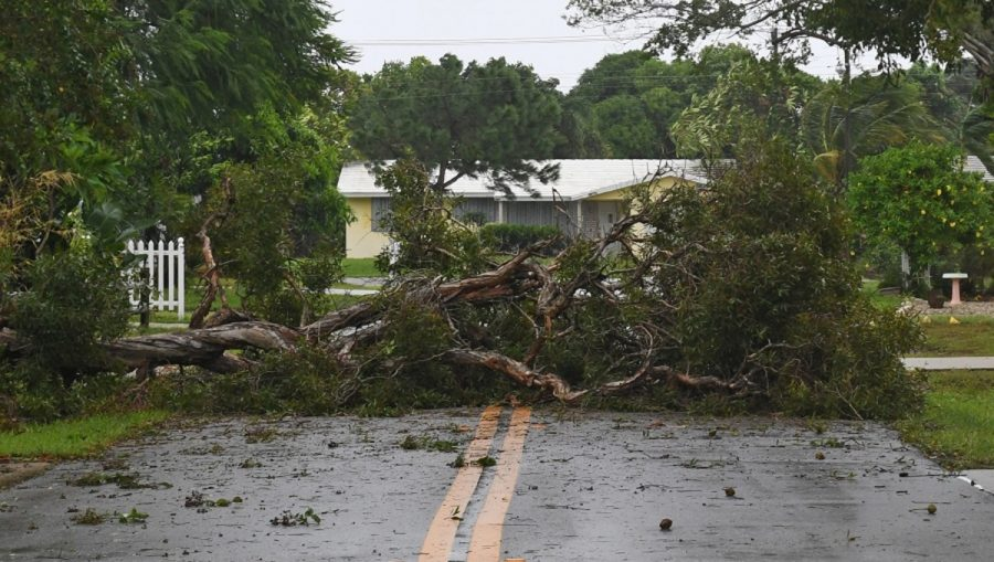 """TOO MUCH. Hurricane Irma leaves behind devastation. It has already heavily damaged some Caribbean islands, devastating Barbuda and tearing through Anguilla.  Barbuda is """"uninhabitable"""" and in a """"total blackout"""" with almost all of its infrastructure destroyed, according to Michael Joseph, president of the Red Cross in Antigua and Barbuda."""