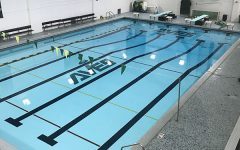 Lady Ave swimmers plunge into new season