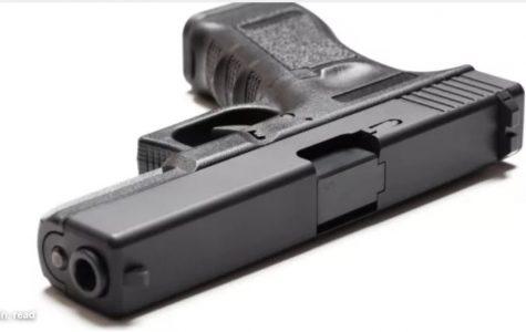Gun Laws, True or False?