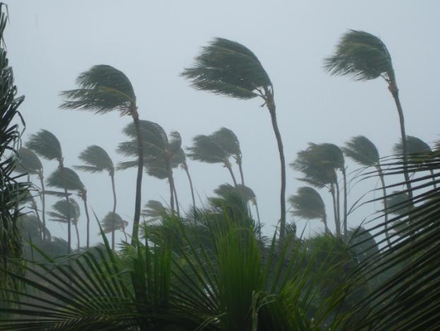 Tropical storm Gordon quiz