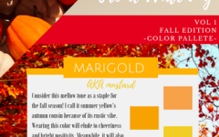 Fall color pallette