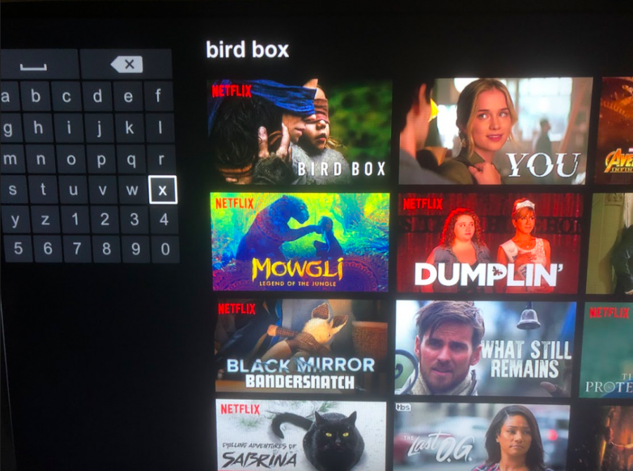 BIRD+BOX.+%22Bird+Box%22+is+among+many+other+Netflix+originals+released+this+year+such+as+%22Dumplin%2C%22+%22You%2C%22+and+the+Bandersnatch+episode+of+%22Black+Mirror.%22+