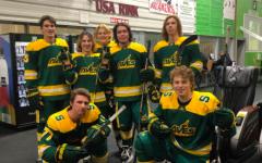 Hockey seniors celebrate