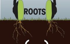 Roots: In the court (and field)