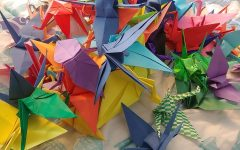 Chinese Club's Origami Cranes