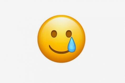 WEARING A MASK. This new emoji relates to quite a few people. It depicts how while many people appear to be smiling, but inside, they are really hurting. While it may be used as more a joke, the deeper meaning of this emoji makes it a nice addition to Apple products.